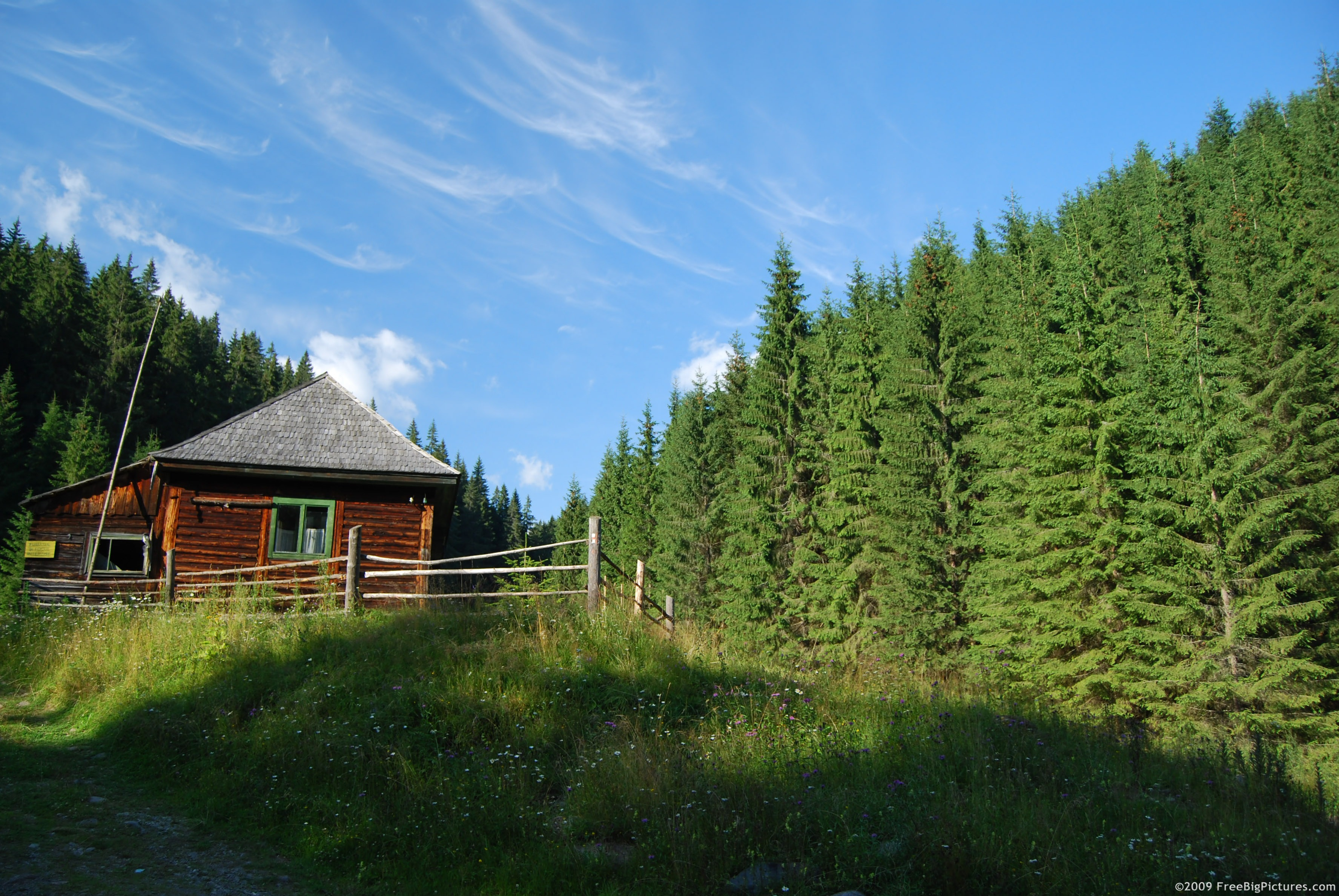 Free high resolution forest pictures house
