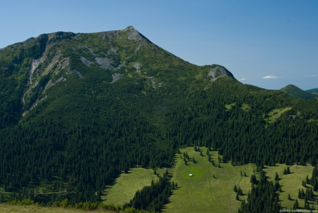 mountain and the greenary - photo #19