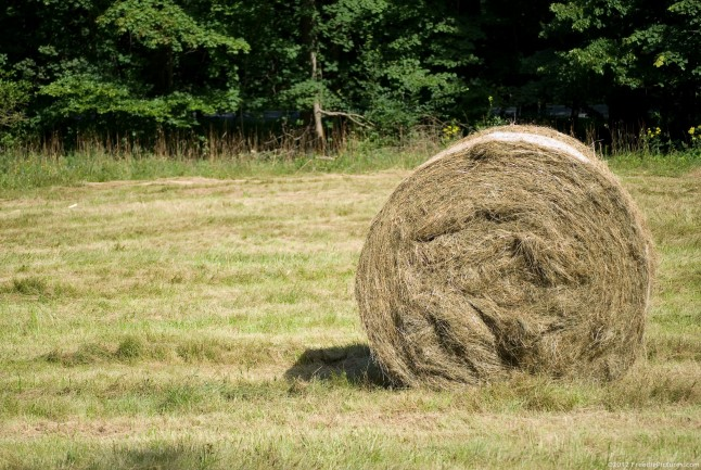 A Hay Roll waiting to be transported