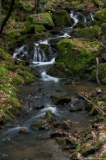 A mossy flow, that creeps among the rocks, in a deciduous forest in a winter warm day. Using a long exposure time, the moving flow appears blurry and rest of the image remains clear.