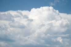 White Swelling Cumulus Clouds